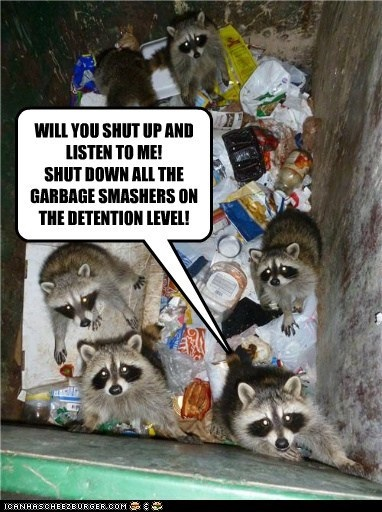 Racoons-Trash-Compactor-Star-Wars-Funny